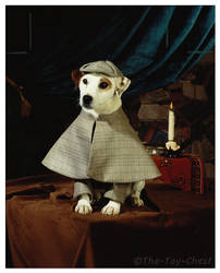 Wishbone Press Photo - Sherlock Holmes by The-Toy-Chest