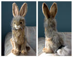 Hansa Black-Tailed Jackrabbit Plush