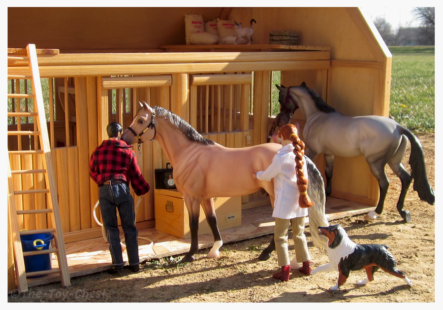 prepare for image horse titled breyer step how steps arriving an barns to