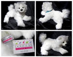 Douglas Medium Floppy Dogs - Piper Samoyed