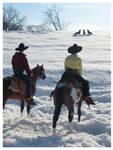 Breyer - Winter On The Range