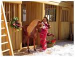 Breyer - Pony For Christmas