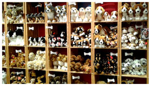Douglas Plush - Woof-Field Gifts at Brookfield Zoo