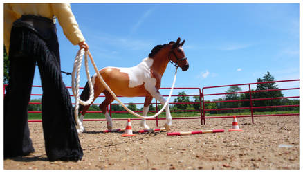 Breyer - Ground Training by The-Toy-Chest