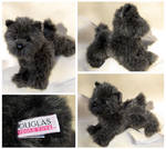Douglas Small Floppy Dogs - Ayre Cairn Terrier