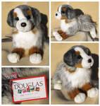 Douglas Medium Floppy Dogs - Sinclair Aussie