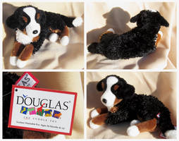 Douglas Regal Dogs - Grizzly Bernese Mountain Dog by The-Toy-Chest