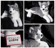 Douglas Regal Dogs - Glacier Husky by The-Toy-Chest