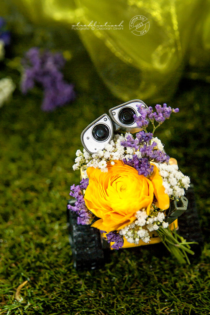 International Women's Day- Wall.E by strehlistisch