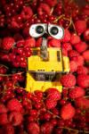 Berries - Wall.E