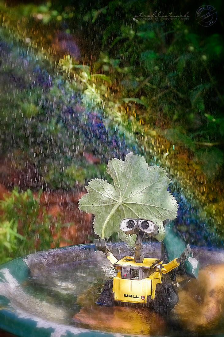 Summer rain by strehlistisch