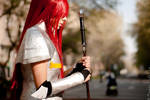 Fairy Tail: Erza