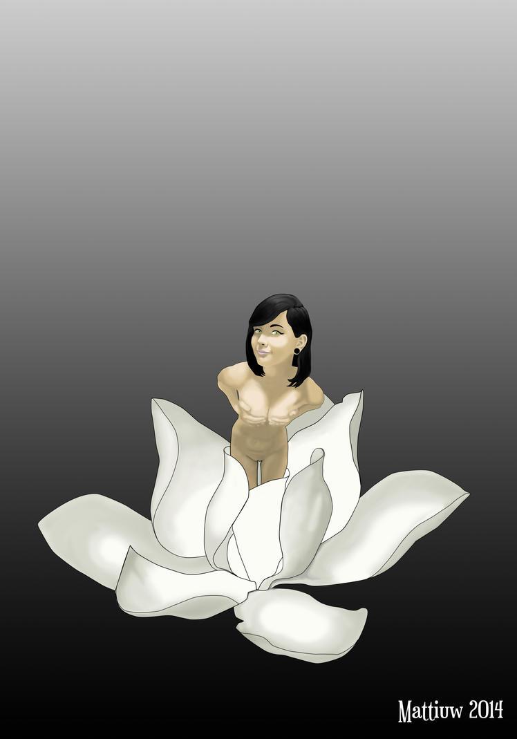 Magnolia by mattiuw