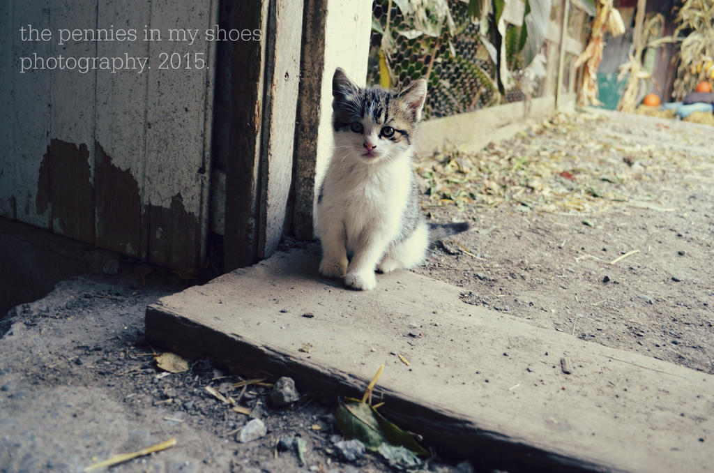 Little Scamp 2 by ThePenniesInMyShoes