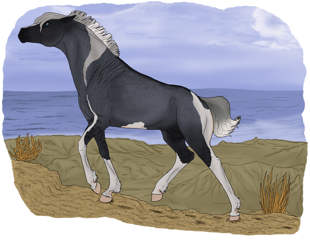 Bid for Nordanner 475 by ReaWolf