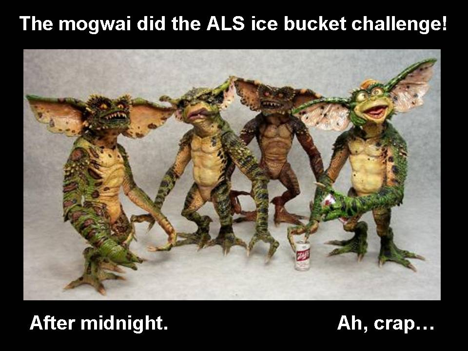 Mogwai Ice Bucket Challenge by Aradrath