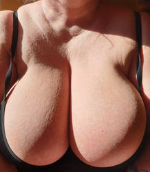 Love sitting in the sun by the window. by Cleavage3