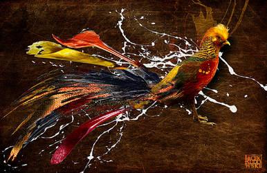 Birdy by q2jacek