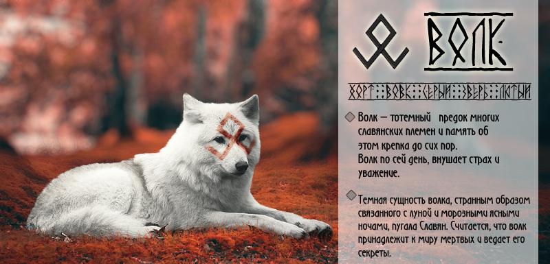 Волк связанный с именами