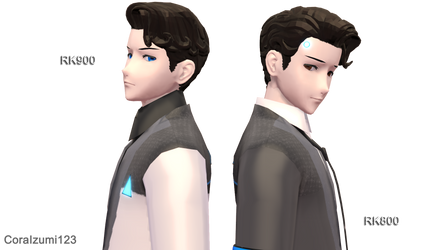 RK800 and RK900