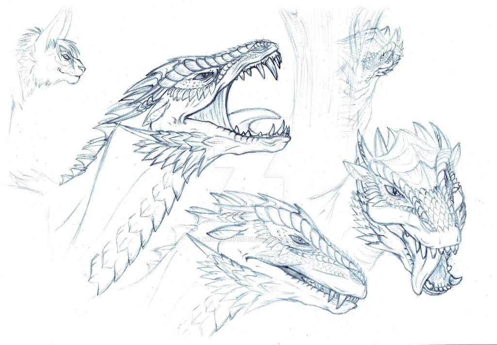 Sketch Snipe head demo version by SiberianDragon