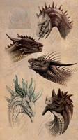R:5 dragons 2016