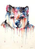 Bear by PaperandDust