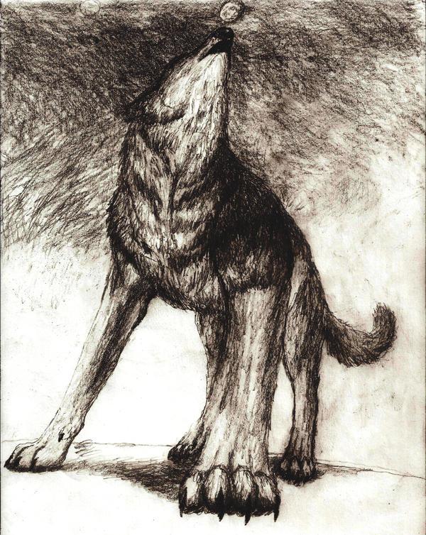 dark wolf howling to black sky by Rhahsid