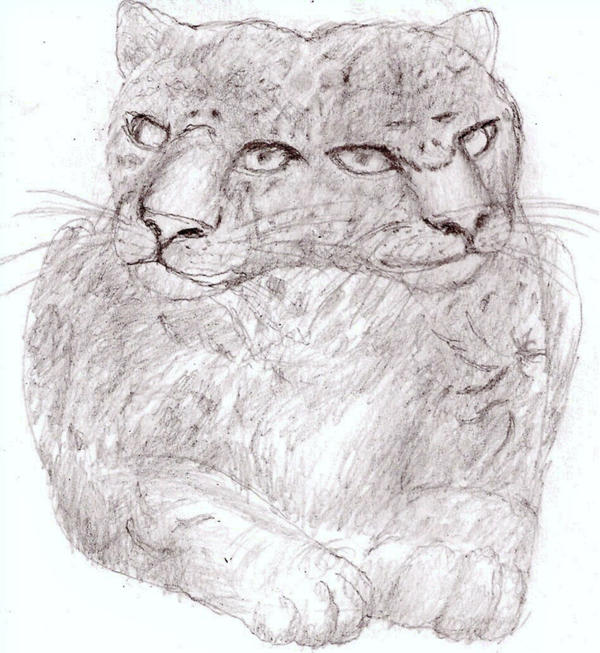 Two Headed Cat Abstract Jaguar By Rhahsid On DeviantArt