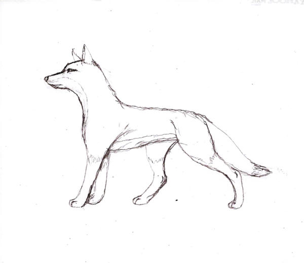 Line Drawing Fox : Fox line art pictures to pin on pinterest daddy