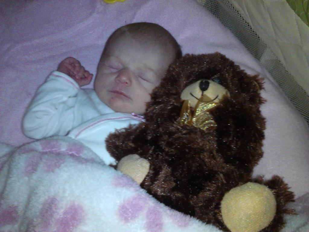Img 20141211 204258frist teddy by valleigh