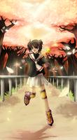Sakura - Golden smile