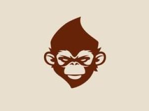 xylotto's Profile Picture