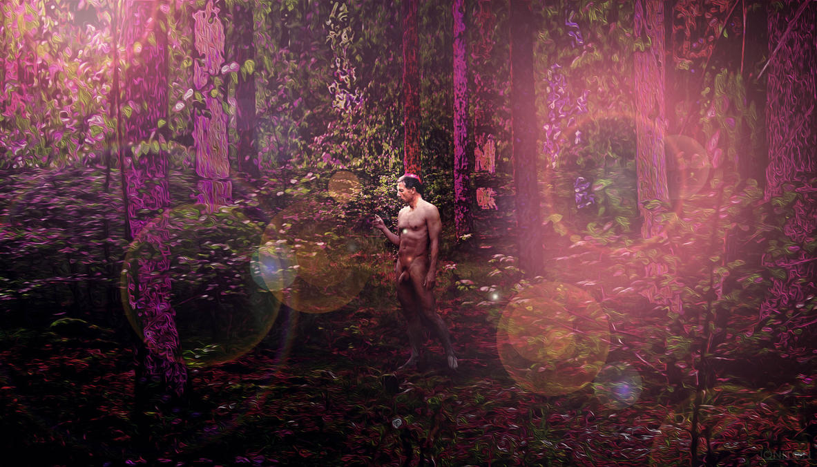 Enchanted Forest by Jonitron