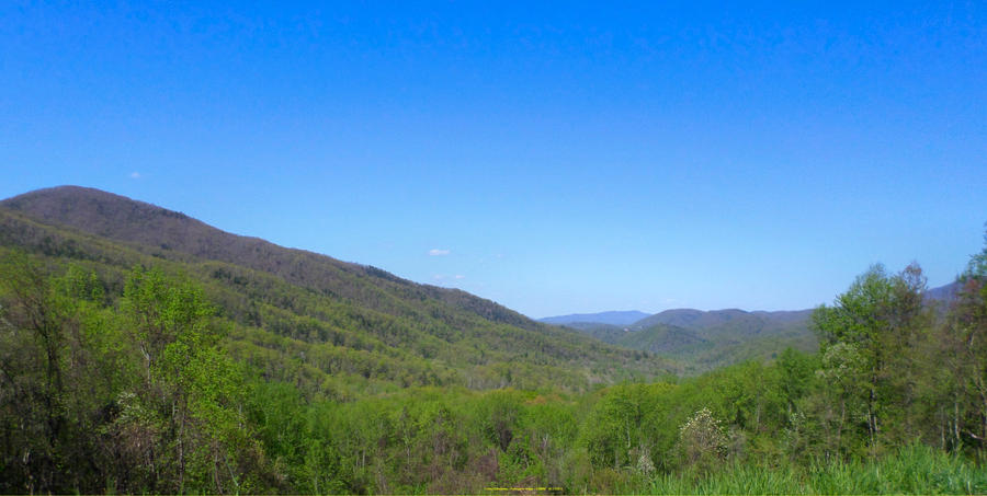 Great Smoky Mountains - Sugarlands by slowdog294