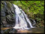 Spruce Flat Falls at Tremont 1