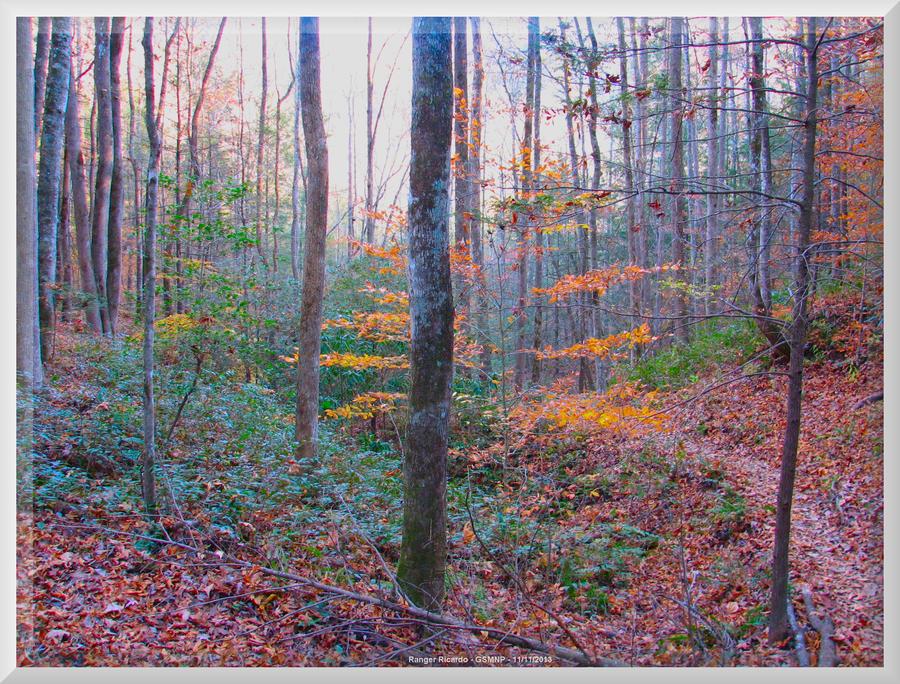 Fighting Creek Trail 36 by slowdog294