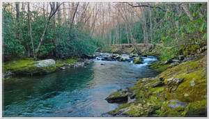 Swimming Hole on Little River Trail 3