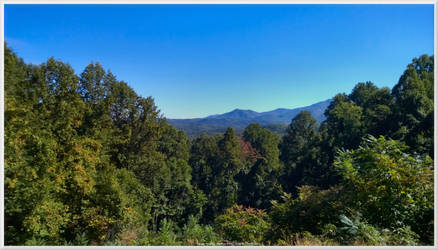 Fall of 2014 comes to Maloney Point 2 by slowdog294