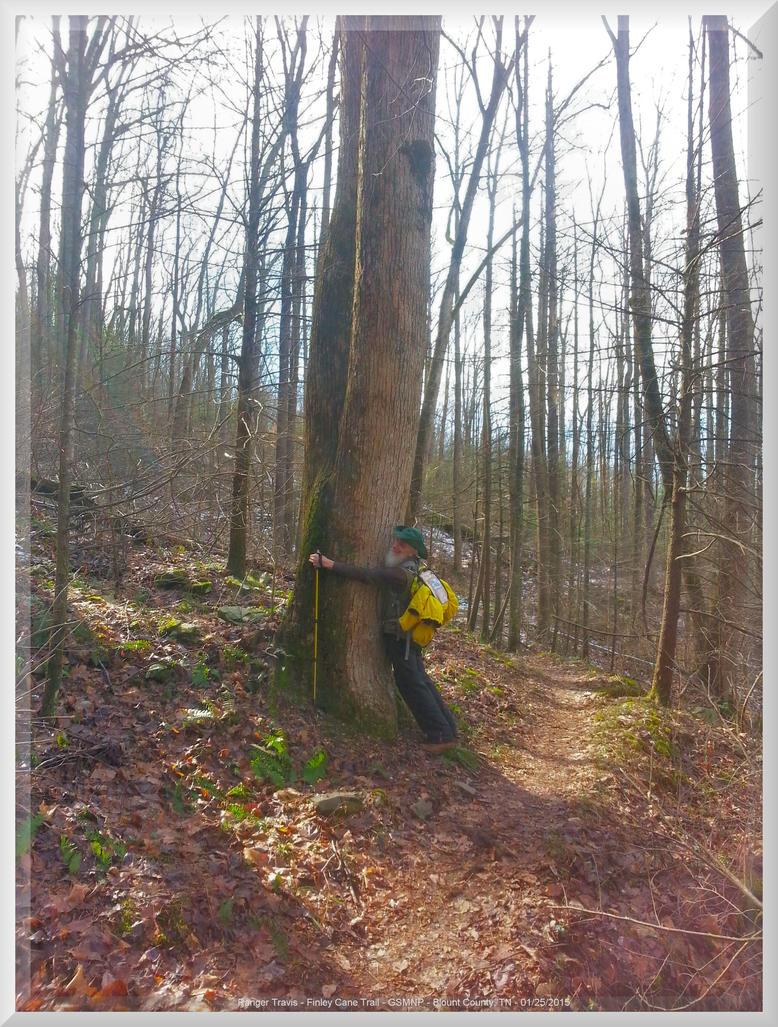 Treehugging on Finley Cane Trail 2 by slowdog294