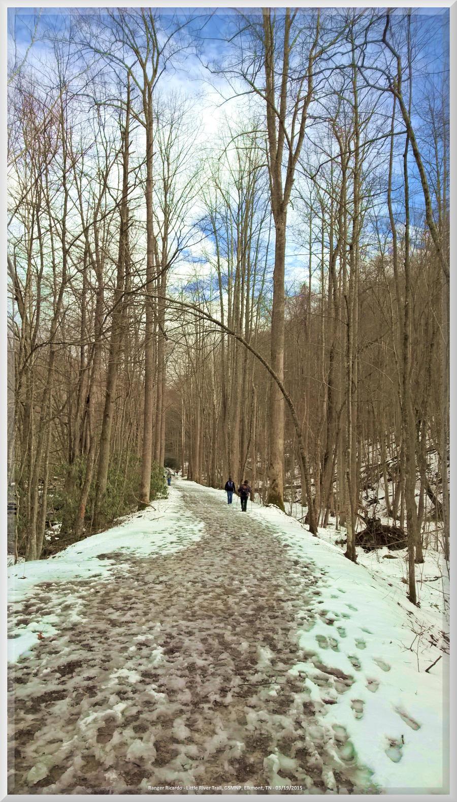 Little River Trail Scenery 013