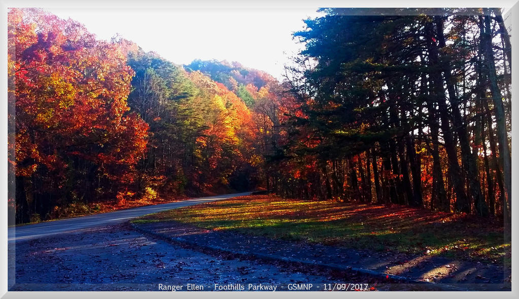 Fall 2017 Colors on Foothills Parkway 28 by slowdog294
