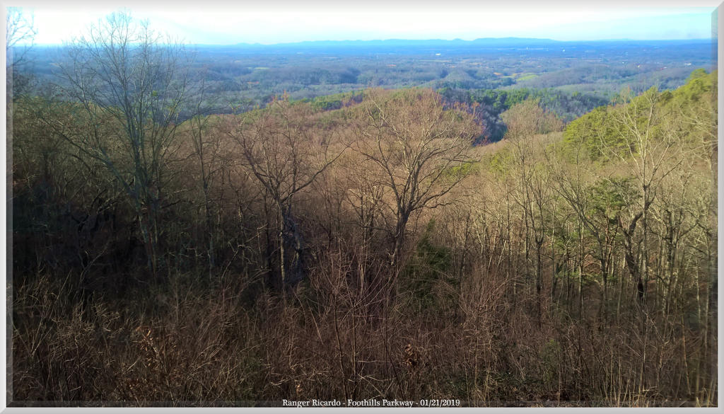 Foothills Parkway - Colors of Winter by slowdog294