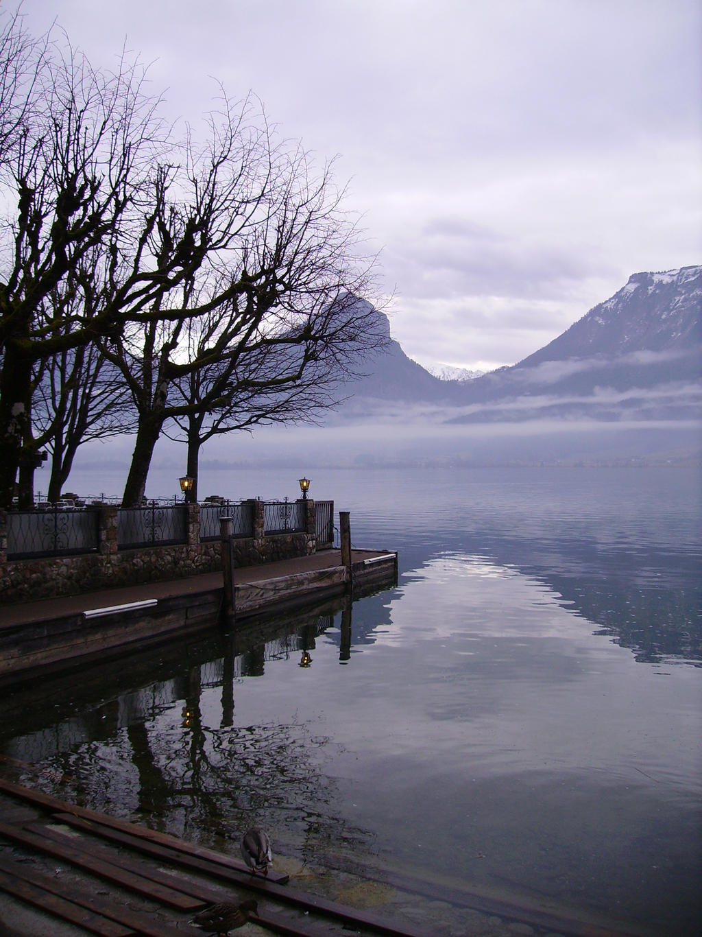 Austrian lake II