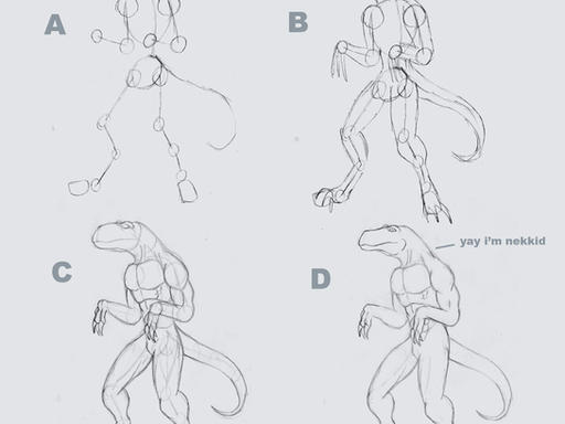 Anthro Wolf Tutorial Simple Anthro Anatomy Tutorial