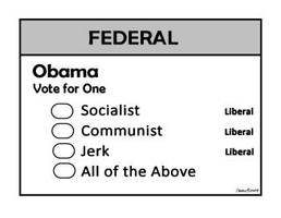 Obama Ballot by Conservatoons