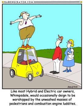 Smug Electric Car Owner