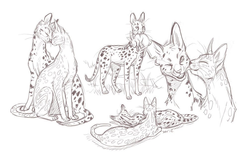 FoE - Sauda and Cass serval sketches by Majime