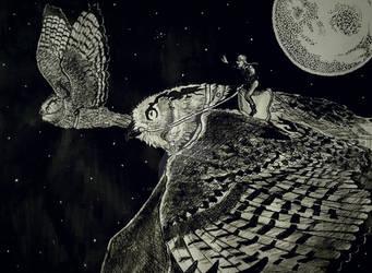 Aviators of the night