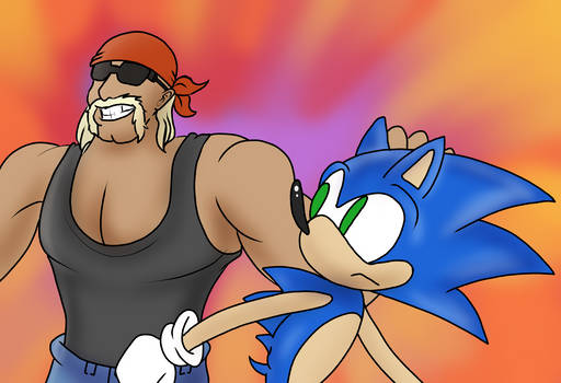 Sonic Meets Hulk